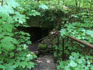 Bunker 302 ist noch erhalten. Er liegt versteckt hinter Bäumen und Sträuchern. Roland Essig zeigt uns den Eingang.