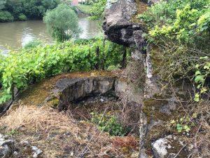Bevor es nach Hause geht, machen wir noch einen Halt in den Weinbergen von Besigheim. Auch hier befinden sich Bunkerruinen.