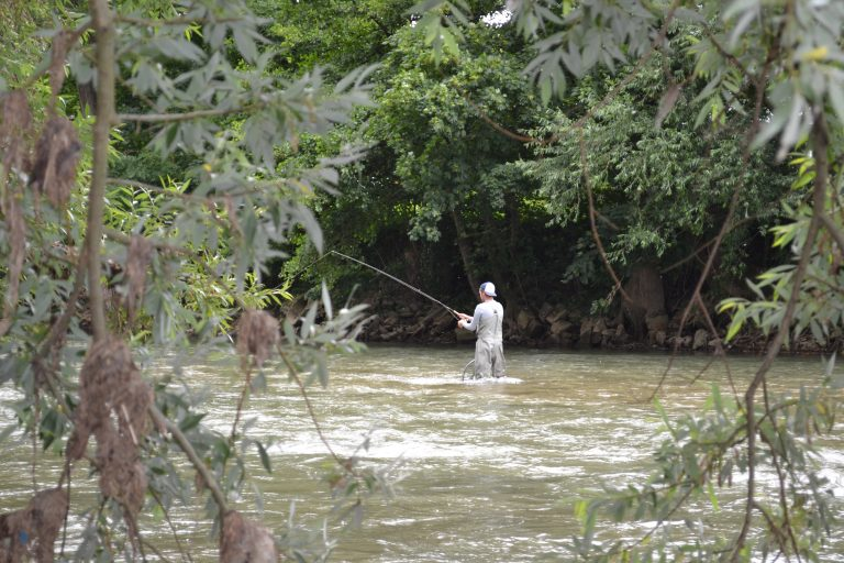 Hinter den Kulissen Folge 2 – Vom Fliegenfischen und Bachforellen